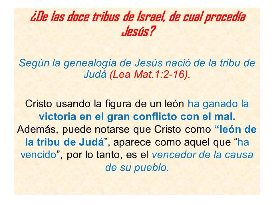 ¿De las doce tribus de Israel, de cual procedía Jesús? Según la genealogía de Jesús nació de la tribu de Judá (Lea Mat.1:2-16). Cristo usando la figur