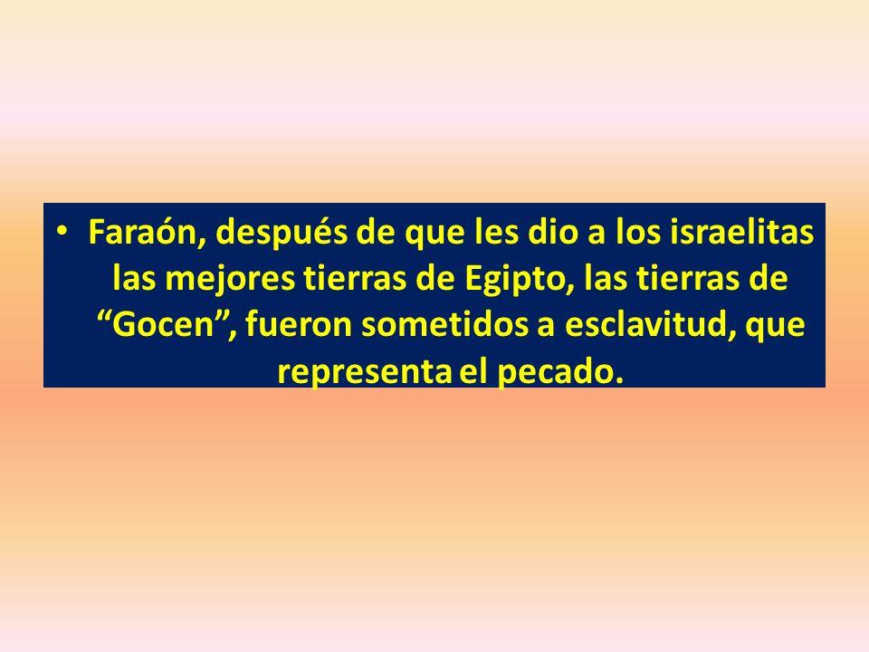 Faraón, después de que les dio a los israelitas las mejores tierras de Egipto, las tierras de Gocen, fueron sometidos a esclavitud, que representa el