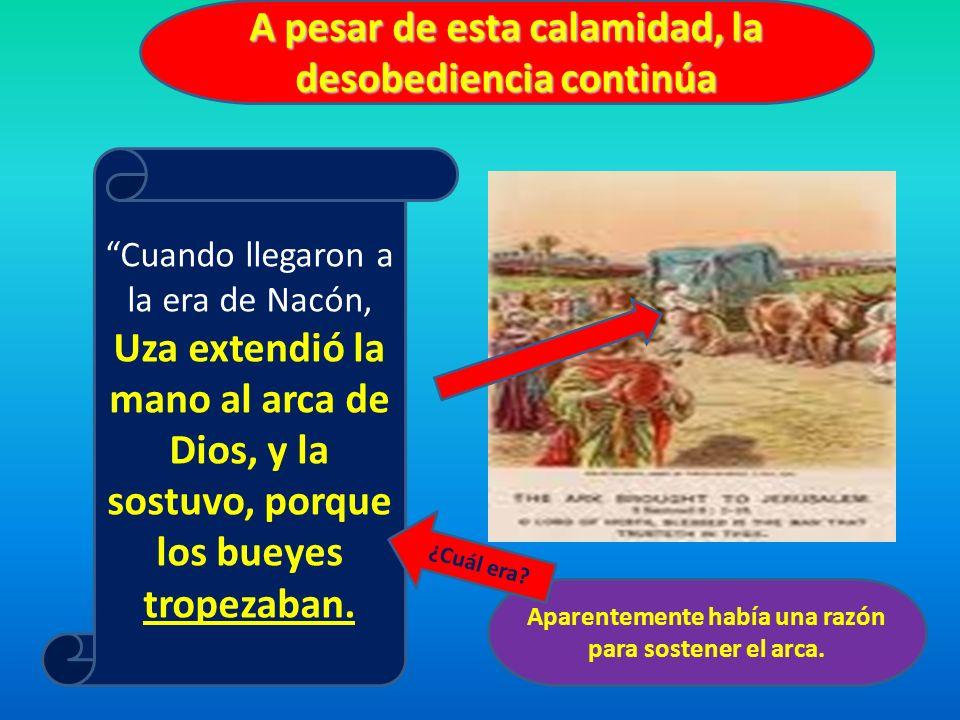 A pesar de esta calamidad, la desobediencia continúa Cuando llegaron a la era de Nacón, Uza extendió la mano al arca de Dios, y la sostuvo, porque los