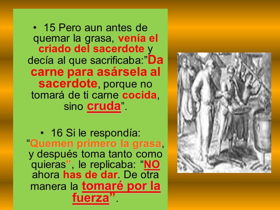 cruda15 Pero aun antes de quemar la grasa, venía el criado del sacerdote y decía al que sacrificaba: Da carne para asársela al sacerdote, porque no to