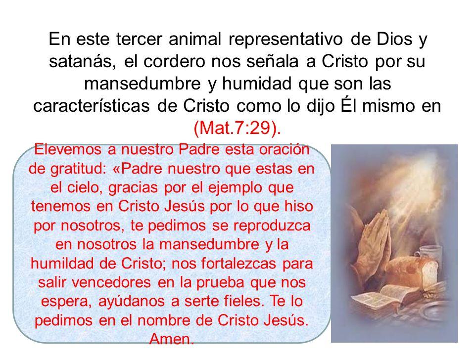 En este tercer animal representativo de Dios y satanás, el cordero nos señala a Cristo por su mansedumbre y humidad que son las características de Cri