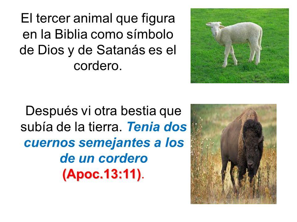 El tercer animal que figura en la Biblia como símbolo de Dios y de Satanás es el cordero. (Apoc.13:11) Después vi otra bestia que subía de la tierra.