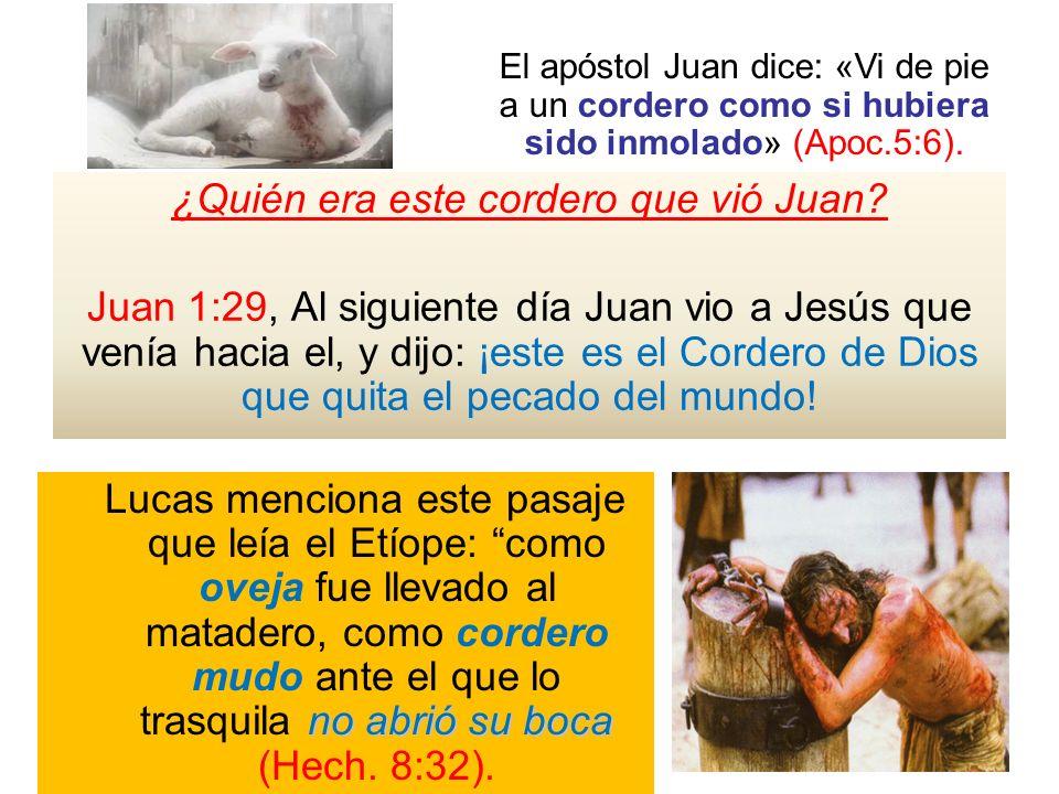 ¿Quién era este cordero que vió Juan? Juan 1:29, Al siguiente día Juan vio a Jesús que venía hacia el, y dijo: ¡este es el Cordero de Dios que quita e