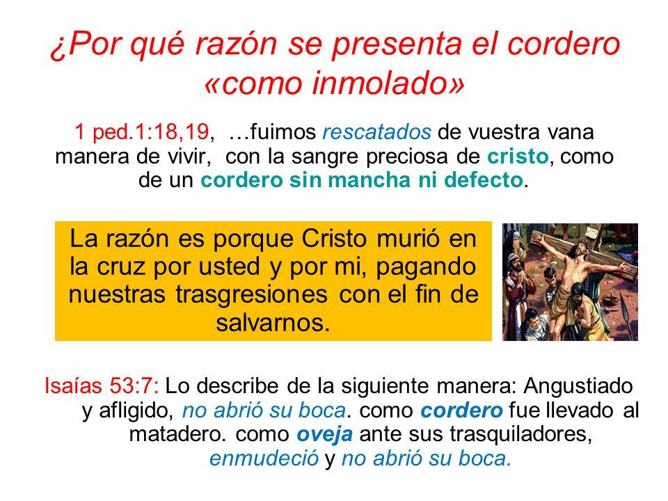¿Por qué razón se presenta el cordero «como inmolado» 1 ped.1:18,19, …fuimos rescatados de vuestra vana manera de vivir, con la sangre preciosa de cri
