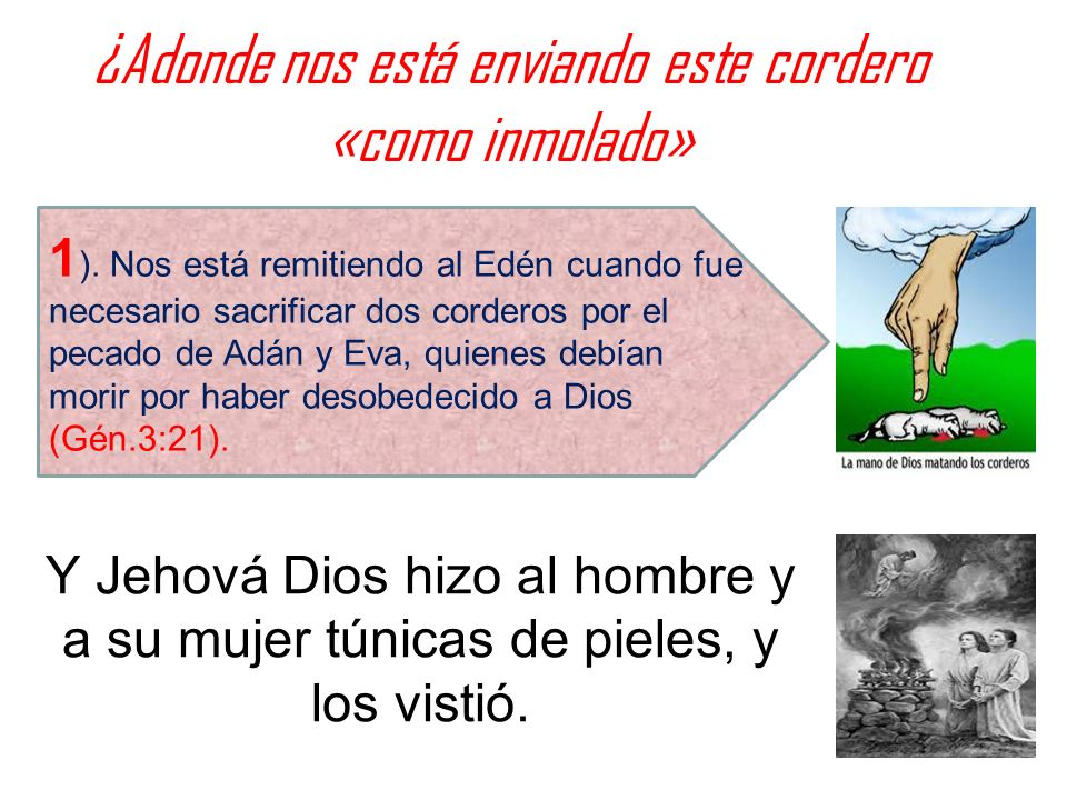 ¿Adonde nos está enviando este cordero «como inmolado» Y Jehová Dios hizo al hombre y a su mujer túnicas de pieles, y los vistió. 1 ). Nos está remiti