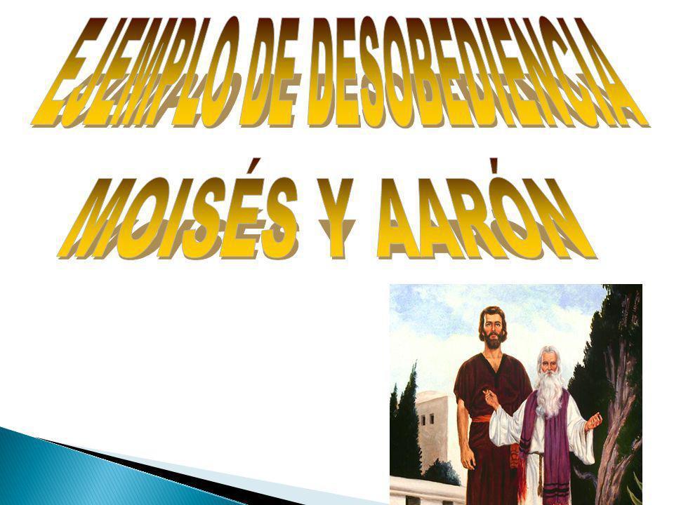 Entonces Moisés dijo: «Iré a ver ese gran prodigio.