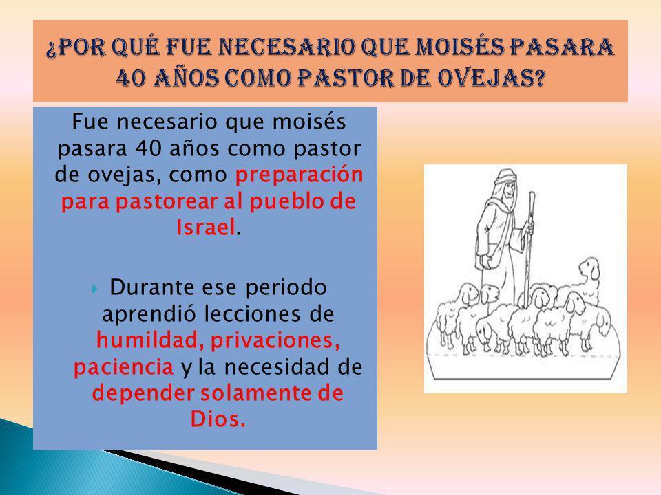 Fue necesario que moisés pasara 40 años como pastor de ovejas, como preparación para pastorear al pueblo de Israel. Durante ese periodo aprendió lecci