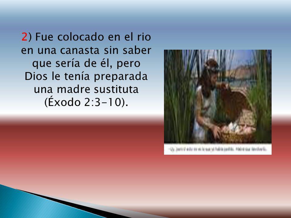 2) Fue colocado en el rio en una canasta sin saber que sería de él, pero Dios le tenía preparada una madre sustituta (Éxodo 2:3-10).
