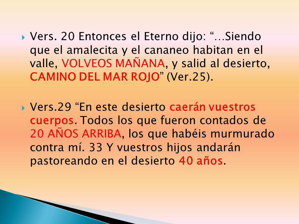 Vers. 20 Entonces el Eterno dijo: …Siendo que el amalecita y el cananeo habitan en el valle, VOLVEOS MAÑANA, y salid al desierto, CAMINO DEL MAR ROJO
