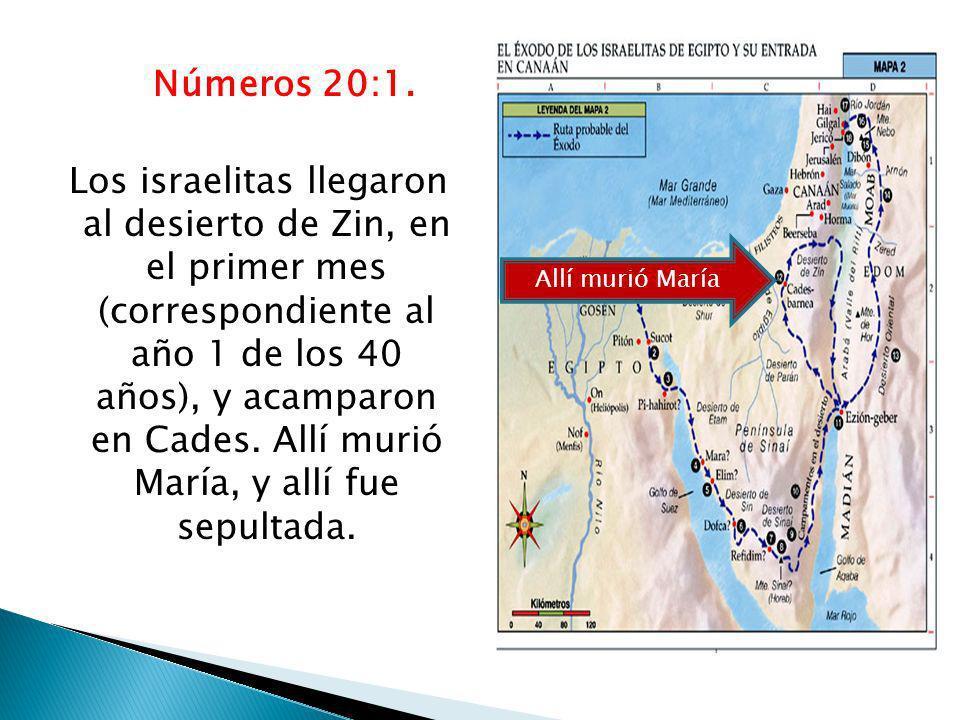 Números 20:1. Los israelitas llegaron al desierto de Zin, en el primer mes (correspondiente al año 1 de los 40 años), y acamparon en Cades. Allí murió