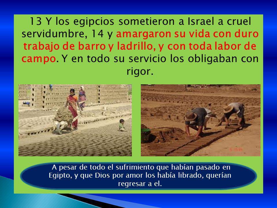 13 Y los egipcios sometieron a Israel a cruel servidumbre, 14 y amargaron su vida con duro trabajo de barro y ladrillo, y con toda labor de campo. Y e