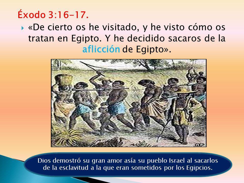 Éxodo 3:16-17. «De cierto os he visitado, y he visto cómo os tratan en Egipto. Y he decidido sacaros de la aflicción de Egipto». Dios demostró su gran