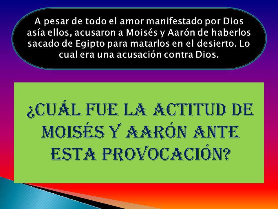 ¿cuál fue la actitud de Moisés y Aarón ante esta provocación? A pesar de todo el amor manifestado por Dios asía ellos, acusaron a Moisés y Aarón de ha