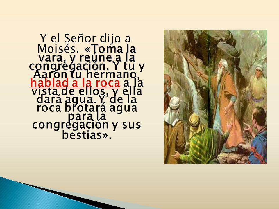 «Toma la vara, y reúne a la congregación. Y el Señor dijo a Moisés. «Toma la vara, y reúne a la congregación. Y tu y Aarón tu hermano, hablad a la roc