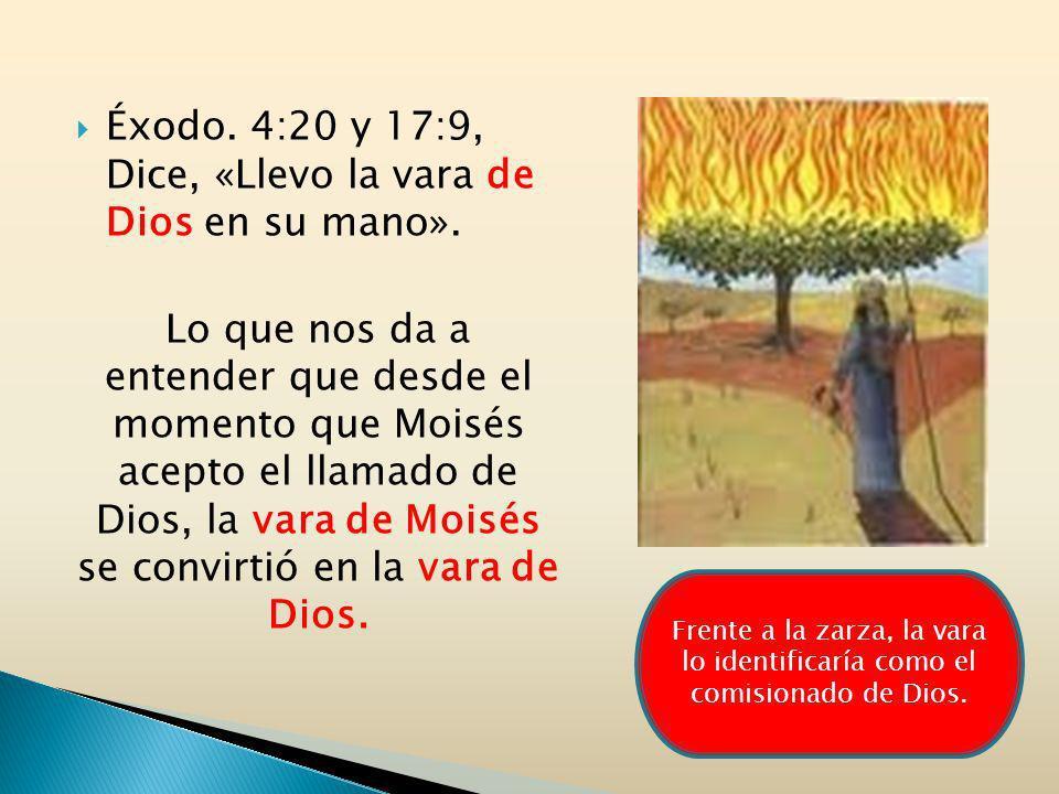 Éxodo. 4:20 y 17:9, Dice, «Llevo la vara de Dios en su mano». Lo que nos da a entender que desde el momento que Moisés acepto el llamado de Dios, la v