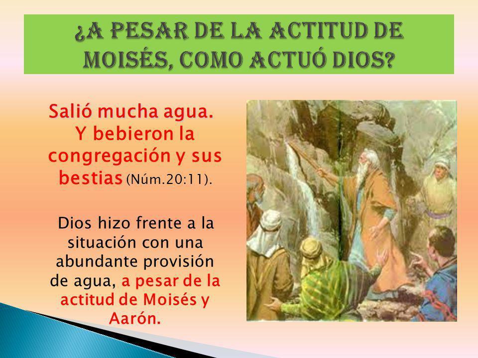 Salió mucha agua. Salió mucha agua. Y bebieron la congregación y sus bestias (Núm.20:11). Dios hizo frente a la situación con una abundante provisión