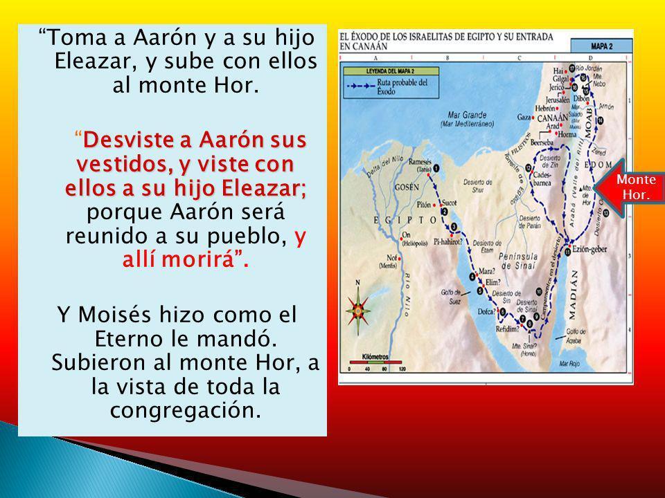 Toma a Aarón y a su hijo Eleazar, y sube con ellos al monte Hor. Desviste a Aarón sus vestidos, y viste con ellos a su hijo Eleazar; Desviste a Aarón