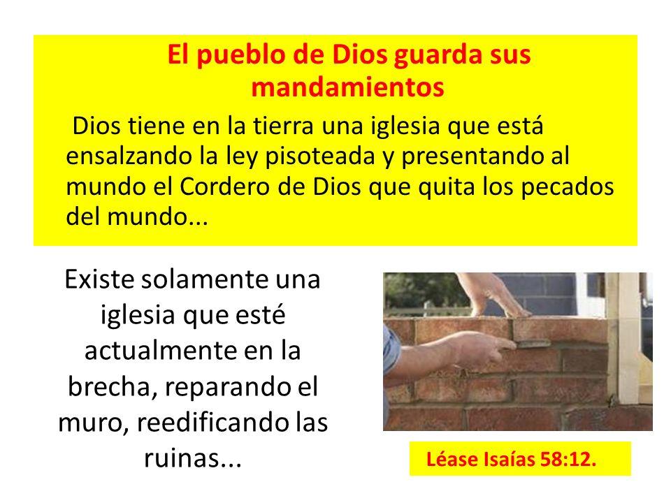 El pueblo de Dios guarda sus mandamientos Dios tiene en la tierra una iglesia que está ensalzando la ley pisoteada y presentando al mundo el Cordero d