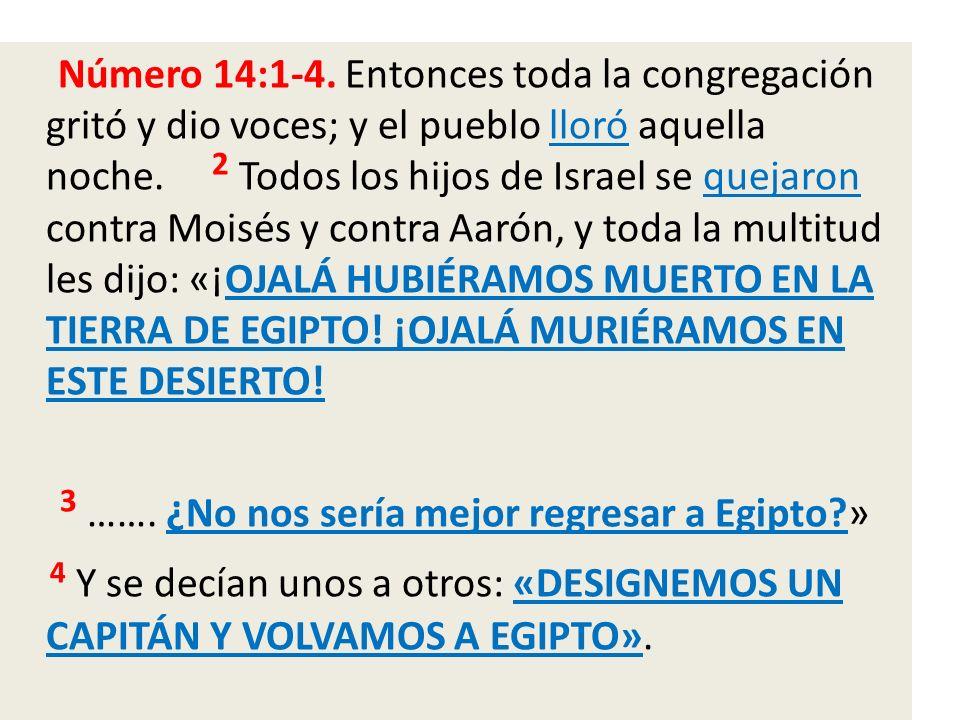 Número 14:1-4. Entonces toda la congregación gritó y dio voces; y el pueblo lloró aquella noche. 2 Todos los hijos de Israel se quejaron contra Moisés