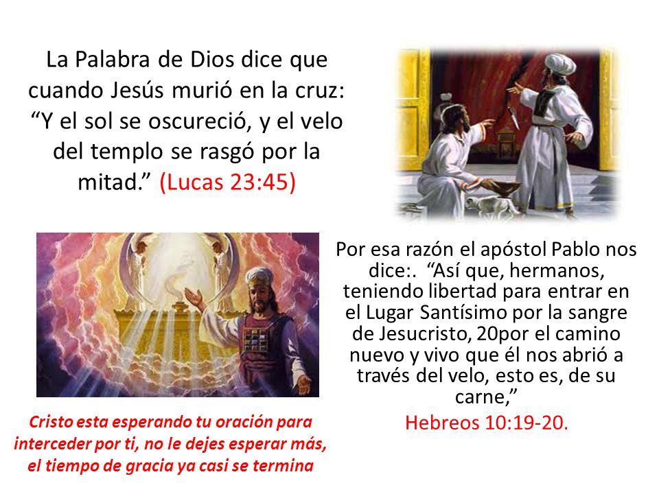Por esa razón el apóstol Pablo nos dice:. Así que, hermanos, teniendo libertad para entrar en el Lugar Santísimo por la sangre de Jesucristo, 20por el