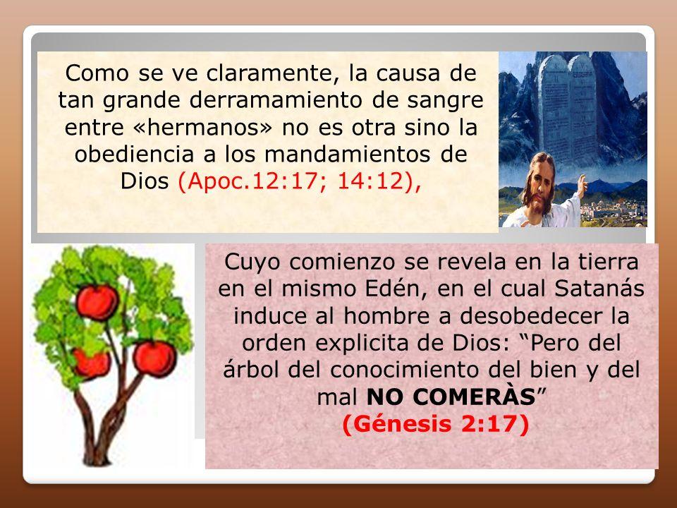 Como se ve claramente, la causa de tan grande derramamiento de sangre entre «hermanos» no es otra sino la obediencia a los mandamientos de Dios (Apoc.
