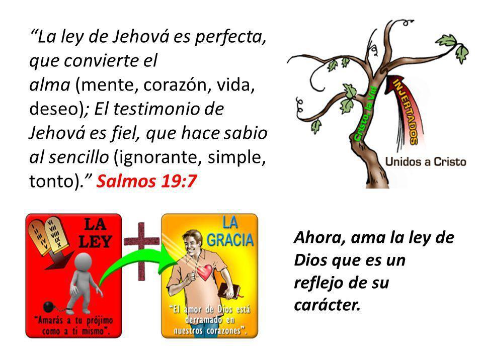 La ley de Jehová es perfecta, que convierte el alma (mente, corazón, vida, deseo); El testimonio de Jehová es fiel, que hace sabio al sencillo (ignora