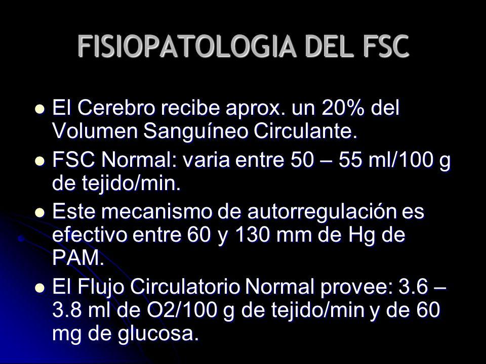 FISIOPATOLOGIA DEL FSC El Cerebro recibe aprox. un 20% del Volumen Sanguíneo Circulante. El Cerebro recibe aprox. un 20% del Volumen Sanguíneo Circula