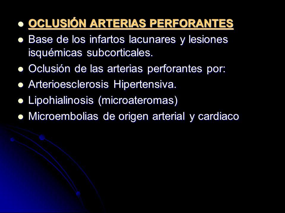 OCLUSIÓN ARTERIAS PERFORANTES OCLUSIÓN ARTERIAS PERFORANTES Base de los infartos lacunares y lesiones isquémicas subcorticales. Base de los infartos l