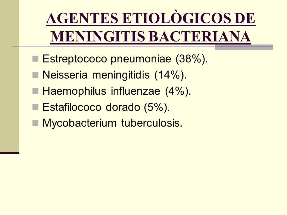 AGENTES ETIOLÒGICOS DE MENINGITIS BACTERIANA Estreptococo pneumoniae (38%). Neisseria meningitidis (14%). Haemophilus influenzae (4%). Estafilococo do