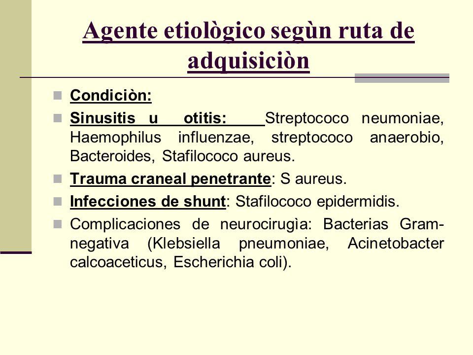 Agente etiològico segùn ruta de adquisiciòn Condiciòn: Sinusitis u otitis: Streptococo neumoniae, Haemophilus influenzae, streptococo anaerobio, Bacte