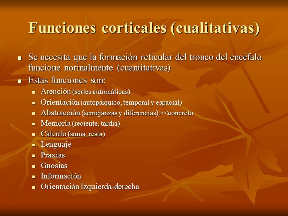 Funciones corticales (cualitativas) Se necesita que la formación reticular del tronco del encéfalo funcione normalmente (cuantitativas) Se necesita qu