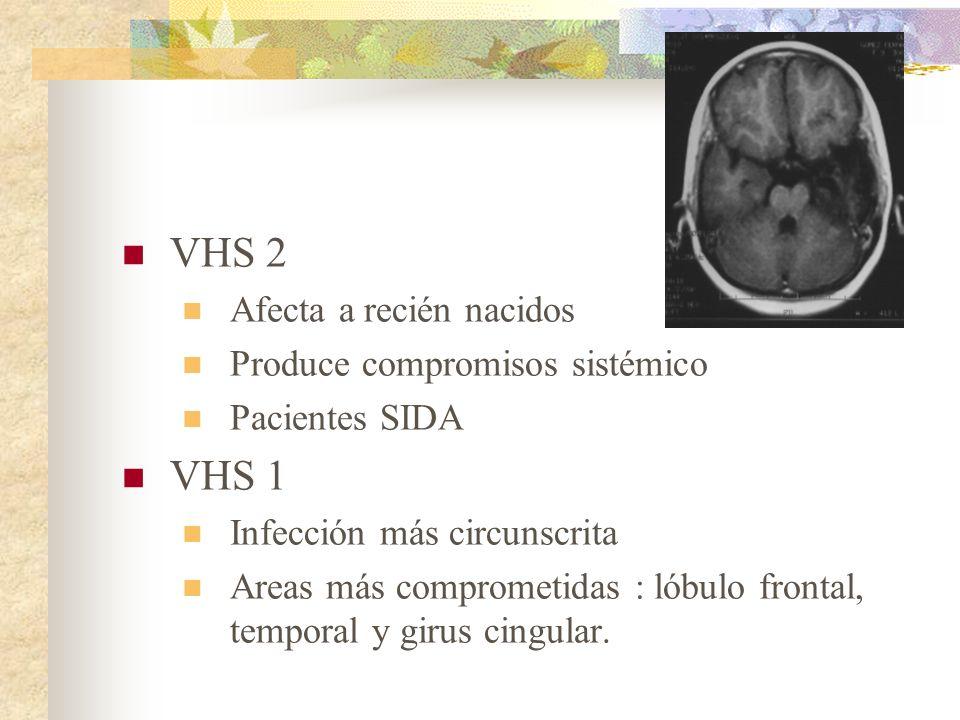 VHS 2 Afecta a recién nacidos Produce compromisos sistémico Pacientes SIDA VHS 1 Infección más circunscrita Areas más comprometidas : lóbulo frontal,
