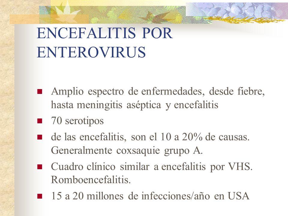 ENCEFALITIS POR ENTEROVIRUS Amplio espectro de enfermedades, desde fiebre, hasta meningitis aséptica y encefalitis 70 serotipos de las encefalitis, so