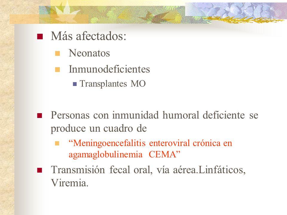 Más afectados: Neonatos Inmunodeficientes Transplantes MO Personas con inmunidad humoral deficiente se produce un cuadro de Meningoencefalitis enterov