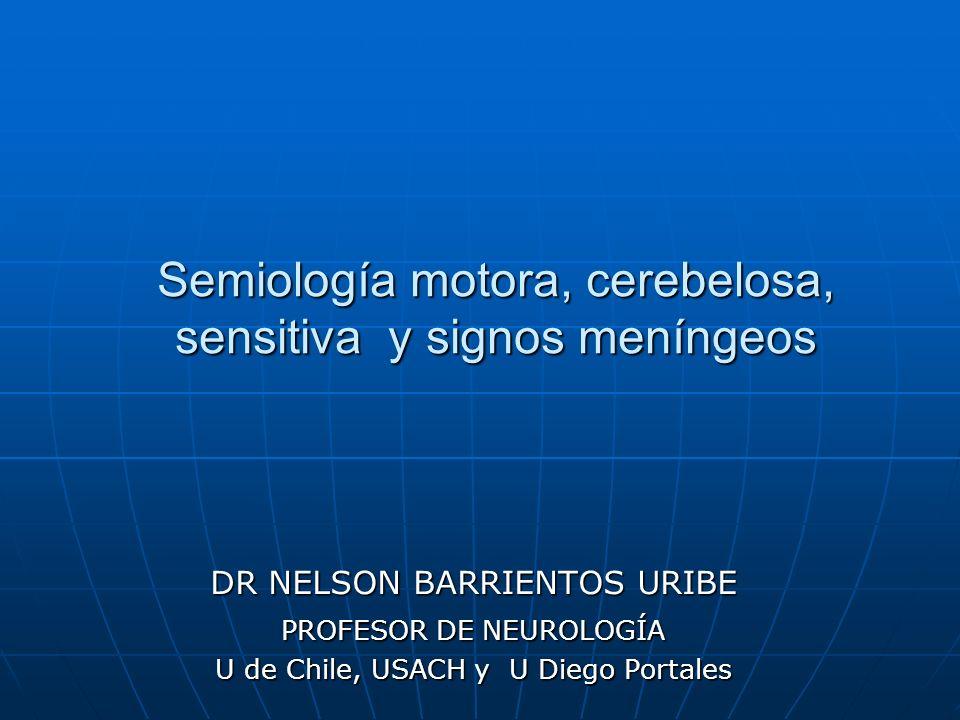 Semiología motora, cerebelosa, sensitiva y signos meníngeos DR NELSON BARRIENTOS URIBE PROFESOR DE NEUROLOGÍA U de Chile, USACH y U Diego Portales