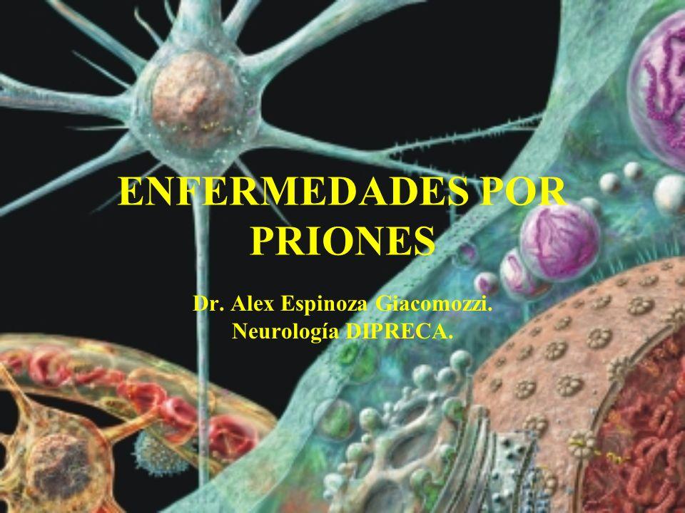 Tipos de ECJ ESPORÁDICA –El tipo más común –Aproximadamente el 85% de los casos –No hay factores de riesgo –Etiología desconocida Conversión espontánea a PrP sc Mutación somática en el gen PRNP Infección exógena