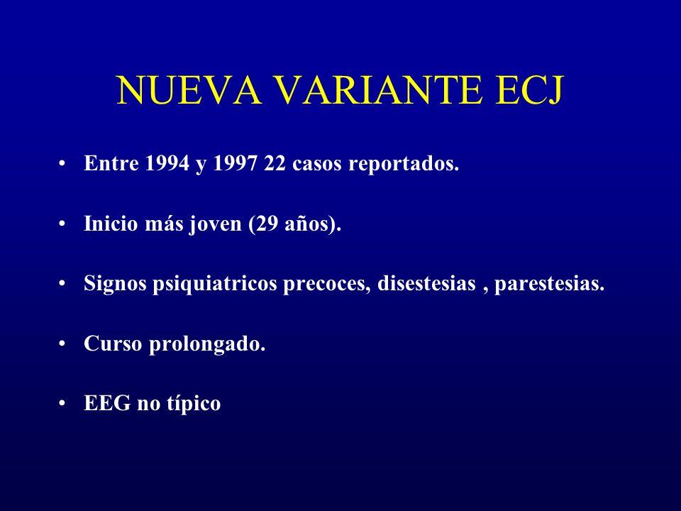 NUEVA VARIANTE ECJ Entre 1994 y 1997 22 casos reportados. Inicio más joven (29 años). Signos psiquiatricos precoces, disestesias, parestesias. Curso p