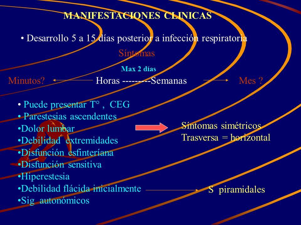 MANIFESTACIONES CLINICAS Desarrollo 5 a 15 días posterior a infección respiratoria Síntomas Horas ---------SemanasMes ?Minutos? Max 2 días Puede prese