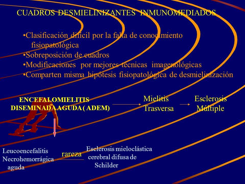 CUADROS DESMIELINIZANTES INMUNOMEDIADOS Clasificación difícil por la falta de conocimiento fisiopatológica Sobreposición de cuadros Modificaciones por