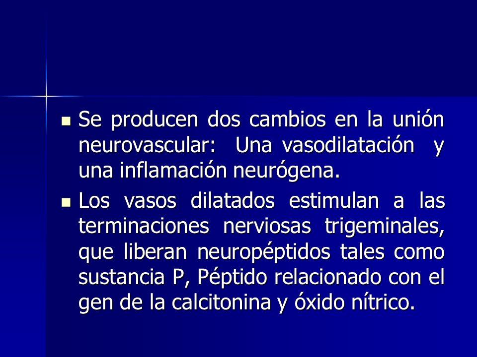 Se producen dos cambios en la unión neurovascular: Una vasodilatación y una inflamación neurógena.