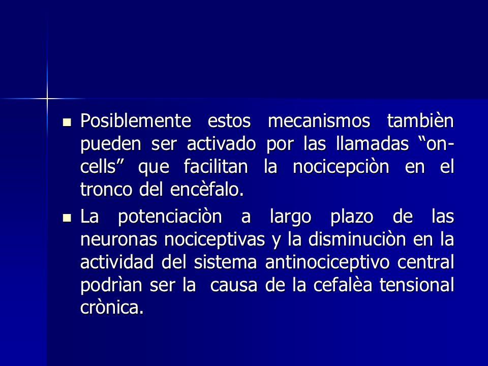 Posiblemente estos mecanismos tambièn pueden ser activado por las llamadas on- cells que facilitan la nocicepciòn en el tronco del encèfalo.