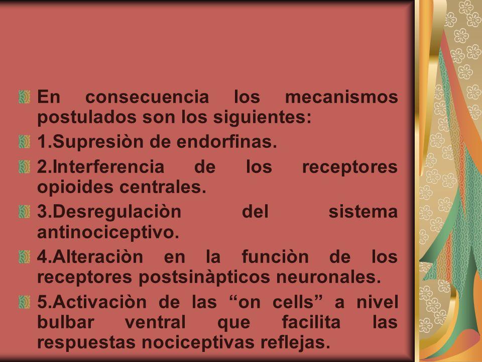 En consecuencia los mecanismos postulados son los siguientes: 1.Supresiòn de endorfinas. 2.Interferencia de los receptores opioides centrales. 3.Desre