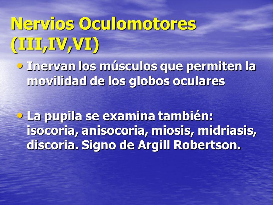 Nervios Oculomotores (III,IV,VI) Inervan los músculos que permiten la movilidad de los globos oculares Inervan los músculos que permiten la movilidad