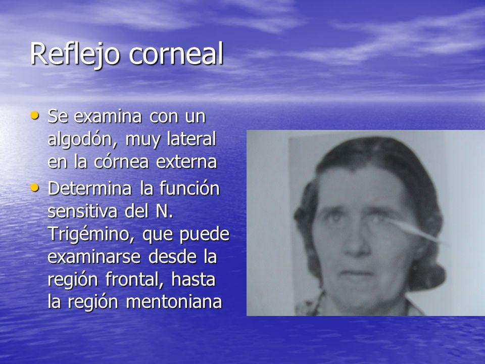 Reflejo corneal Se examina con un algodón, muy lateral en la córnea externa Se examina con un algodón, muy lateral en la córnea externa Determina la f