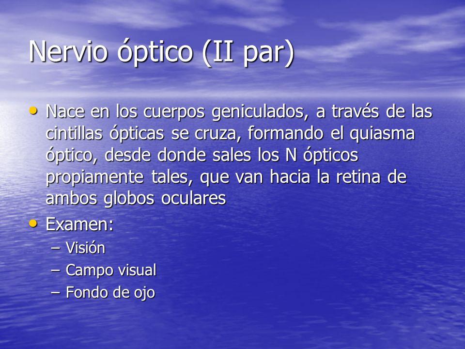 Nervio óptico (II par) Nace en los cuerpos geniculados, a través de las cintillas ópticas se cruza, formando el quiasma óptico, desde donde sales los