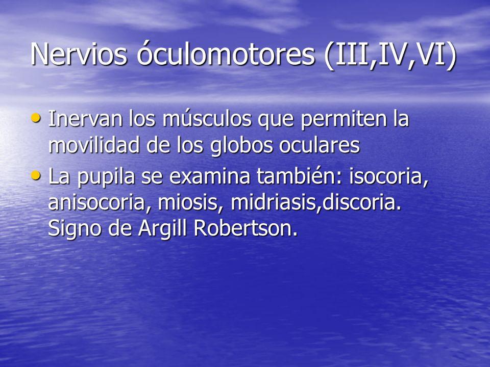 Nervios óculomotores (III,IV,VI) Inervan los músculos que permiten la movilidad de los globos oculares Inervan los músculos que permiten la movilidad