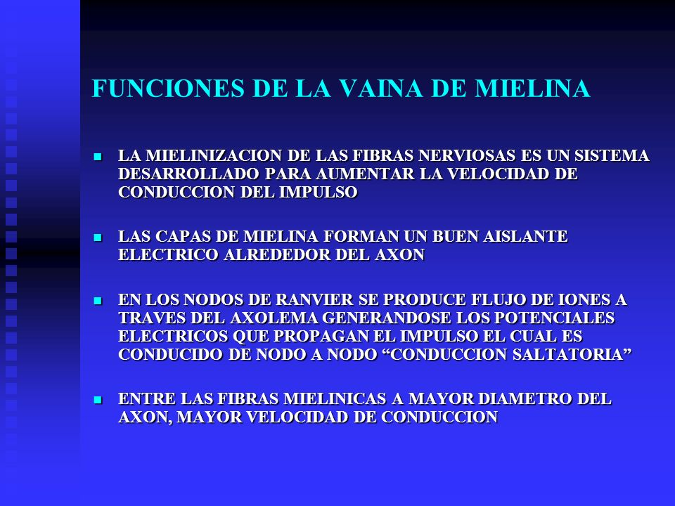 FUNCIONES DE LA VAINA DE MIELINA LA MIELINIZACION DE LAS FIBRAS NERVIOSAS ES UN SISTEMA DESARROLLADO PARA AUMENTAR LA VELOCIDAD DE CONDUCCION DEL IMPU