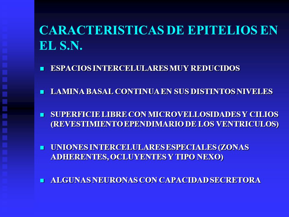 CARACTERISTICAS DE EPITELIOS EN EL S.N. ESPACIOS INTERCELULARES MUY REDUCIDOS ESPACIOS INTERCELULARES MUY REDUCIDOS LAMINA BASAL CONTINUA EN SUS DISTI