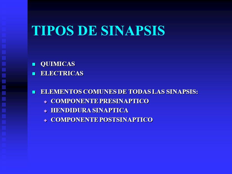 TIPOS DE SINAPSIS QUIMICAS QUIMICAS ELECTRICAS ELECTRICAS ELEMENTOS COMUNES DE TODAS LAS SINAPSIS: ELEMENTOS COMUNES DE TODAS LAS SINAPSIS: COMPONENTE