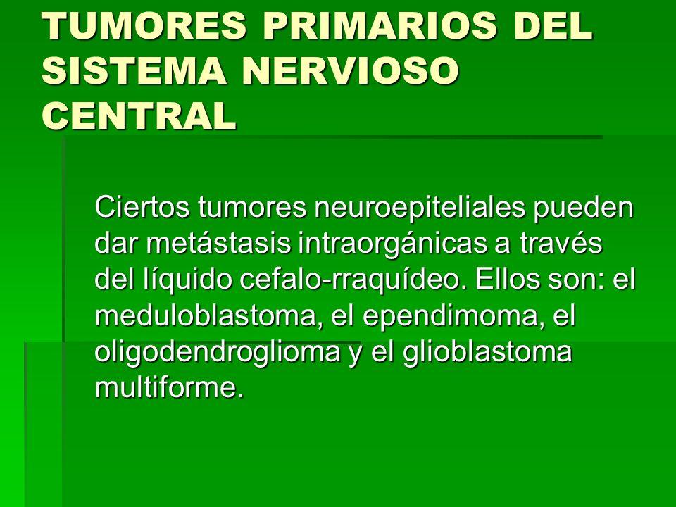 TUMORES PRIMARIOS DEL SISTEMA NERVIOSO CENTRAL Ciertos tumores neuroepiteliales pueden dar metástasis intraorgánicas a través del líquido cefalo-rraqu